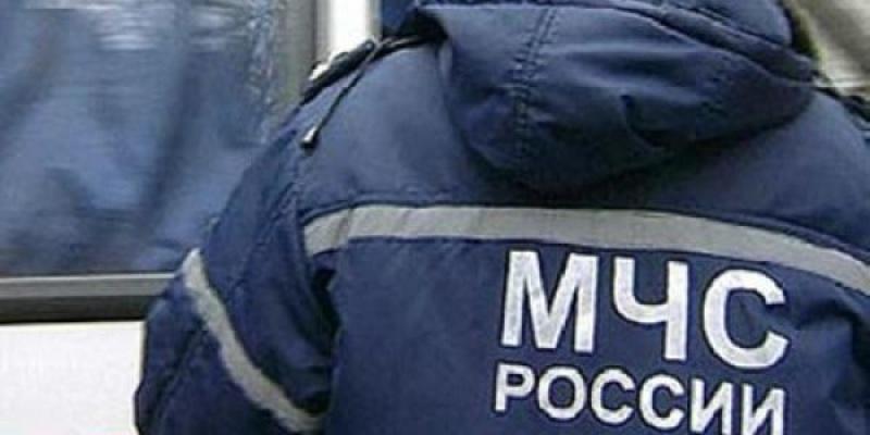 В Петербурге сотрудники МЧС спасли утку, вмерзшую в лед (ВИДЕО)