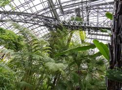 Петербуржец заработал 5 млн рублей на нелегальных корпоративах в Ботаническом саду