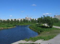«В чем сила, губернатор?»: Анохин пожаловался Полтавченко на строительство футбольного поля в Приморском районе