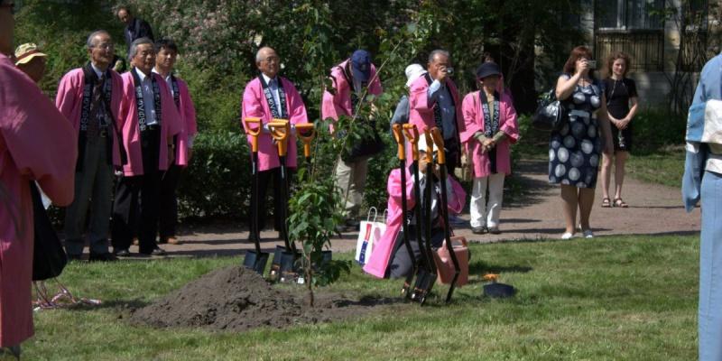 Японская делегация привезла в Ботанический сад саженцы сакуры