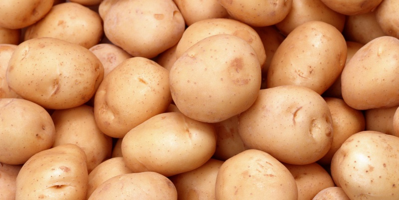 """В Петербург не пустили 560 кг """"поддельного""""картофеля из США"""