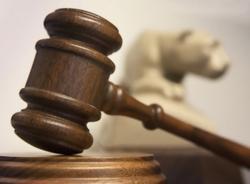 Виктор Прокопцов затягивает очередное судебное разбирательство