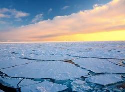 Российские школьники открыли новый остров в Арктике