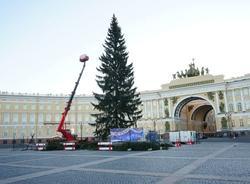 Петербургская елка оказалась дороже московской