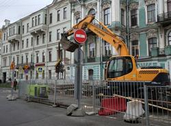 В центре Петербурга уничтожают деревья, безответственно обрубая корни