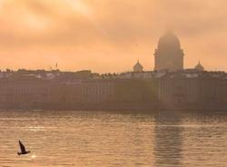 МЧС предупреждает о тумане в Петербурге 10 сентября