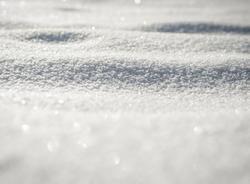 Первый снег накроет улицы Петербурга уже на следующей неделе
