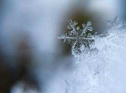 18 октября петербуржцев ждет снег