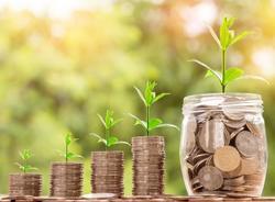 Начинающим предпринимателям будут выдаваться льготные займы до 5 млн