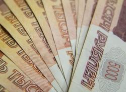 В Общественной палате Петербурга опровергли сведения о выплатах наблюдателям за общероссийским голосованием
