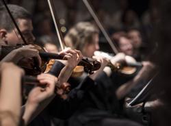 Петербургская филармония имени Шостаковича открывает 101-й сезон
