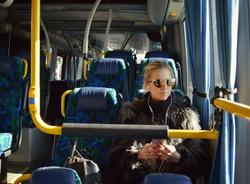 В Петербурге появится 364 экологичных автобуса