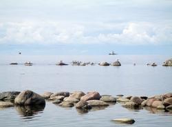 Настраже экологии: новые проекты– сзаботой обезопасности петербуржцев